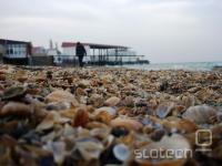 Kasipijske obale na jugu ne pokriva pesek, pač pa školjke ...
