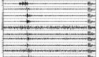 Šest računalnikov je zaznalo potres magnitude 4,4 v LA 16. marca