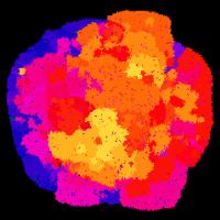 Avidiani (obarvani) se širijo v prostor (črno). Barva prikazuje čilost organizma.