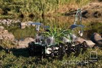 Element razstave Nomadske rastline