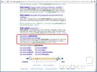 Google sproti označuje prepoznane zlonamerne strani.