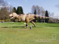 Plastični model tiranozavra rexa v Arboretumi Volčji potok, za ponazoritev velikosti.