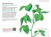 Primer interaktivnega učbenika