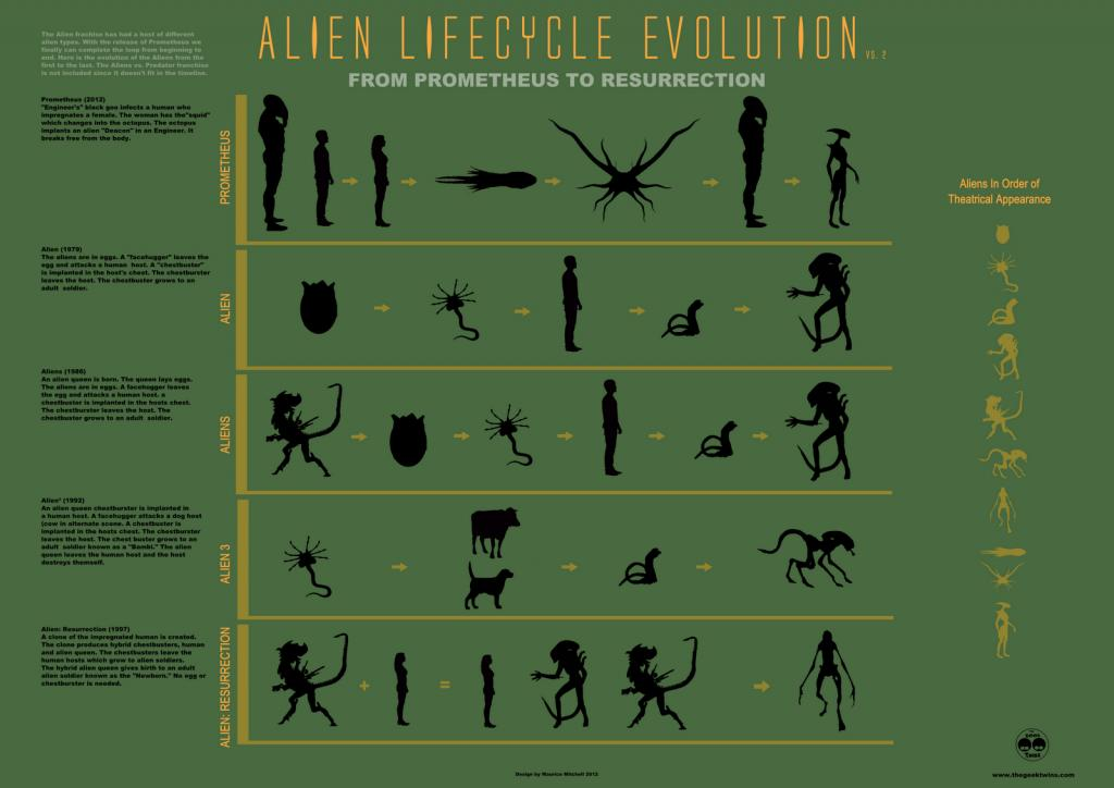 ALIEN lifecycle evolution
