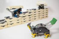 Roboti TERMES med gradnjo.