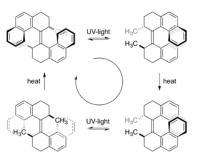 Molekulski motor