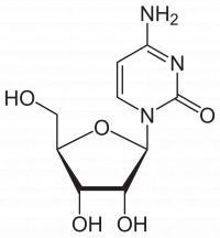 Citidin je normalni gradnik RNA.